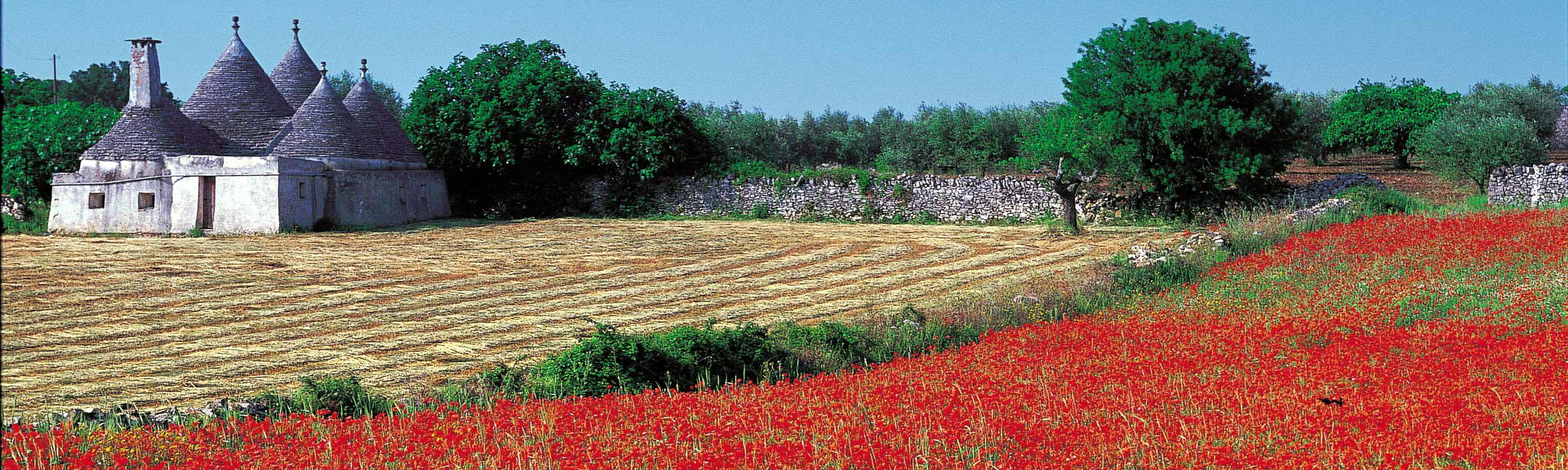 Puglia, Italy scenic landscape